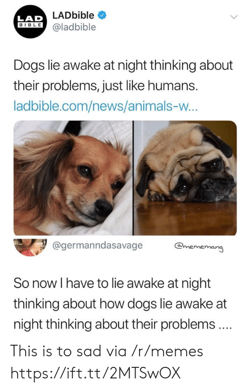 Bible: LADbible  LAD  BIBLE@ladbible  Dogs lie awake at night thinking about  their problems, just like humans.  ladbible.com/news/animals-w...  @germanndasavage  @mememang  So now I have to lie awake at night  thinking about how dogs lie awake at  night thinking about their problems.  > This is to sad via /r/memes https://ift.tt/2MTSwOX