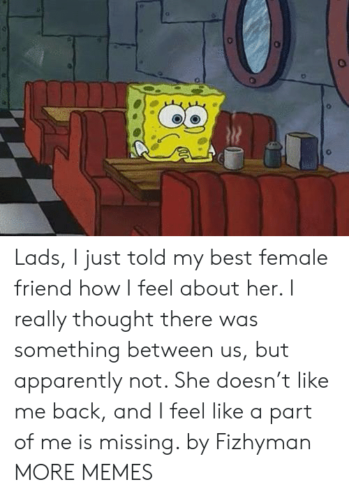 Female Friend: Lads, I just told my best female friend how I feel about her. I really thought there was something between us, but apparently not. She doesn't like me back, and I feel like a part of me is missing. by Fizhyman MORE MEMES