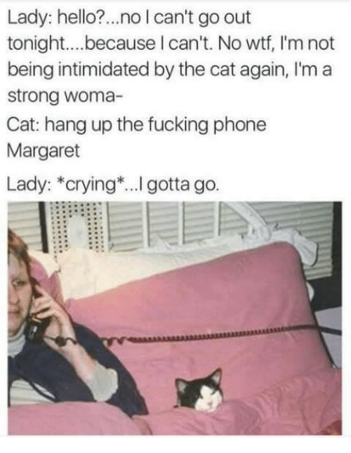 Cats, Crying, and Fucking: Lady: hello?... no l can't go out  tonight.... because can't. No wtf, l'm not  being intimidated by the cat again, l'm a  Strong Woma-  Cat: hang up the fucking phone  Margaret  Lady: *crying ...l gotta go.