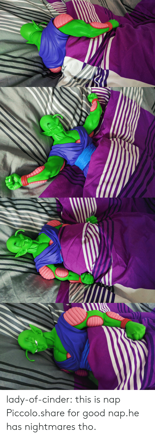nightmares: lady-of-cinder:  this is nap Piccolo.share for good nap.he has nightmares tho.