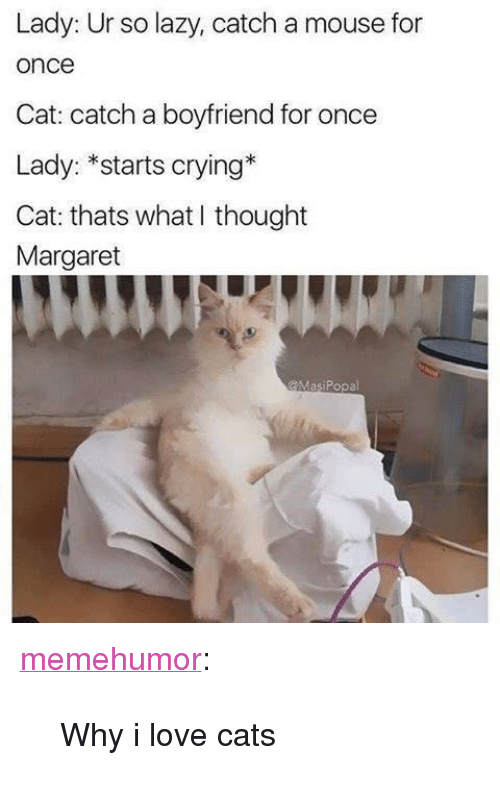 """crying cat: Lady: Ur so lazy, catch a mouse for  once  Cat: catch a boyfriend for once  Lady: *starts crying*  Cat: thats what I thought  Margaret  @MasiPopal <p><a href=""""http://memehumor.net/post/171341743121/why-i-love-cats"""" class=""""tumblr_blog"""">memehumor</a>:</p>  <blockquote><p>Why i love cats</p></blockquote>"""