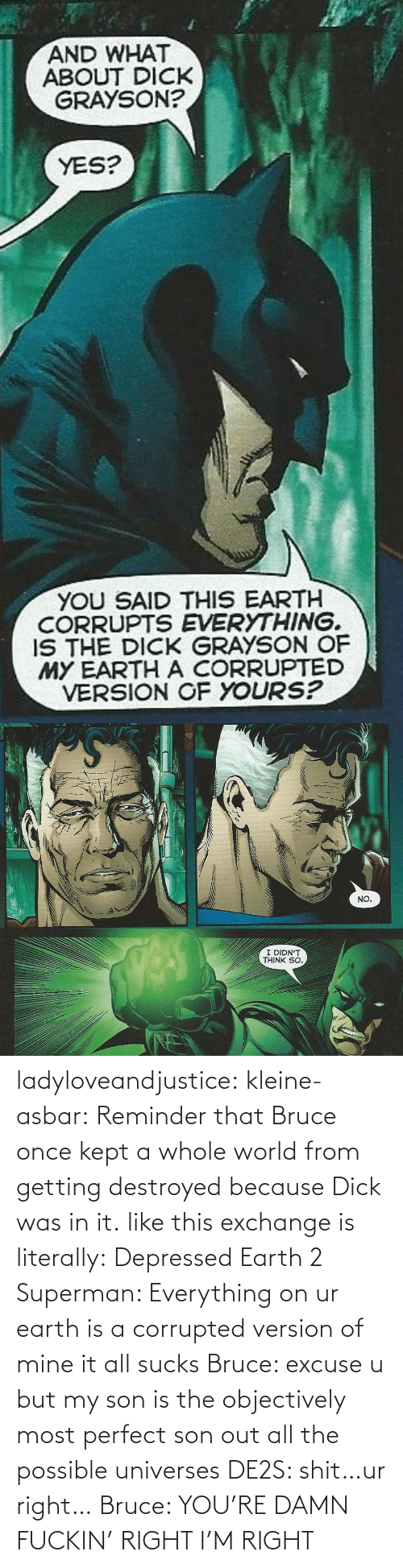 It All: ladyloveandjustice:  kleine-asbar: Reminder that Bruce once kept a whole world from getting destroyed because Dick was in it. like this exchange is literally: Depressed Earth 2 Superman: Everything on ur earth is a corrupted version of mine it all sucks Bruce: excuse u but my son is the objectively most perfect son out all the possible universes DE2S: shit…ur right… Bruce: YOU'RE DAMN FUCKIN' RIGHT I'M RIGHT