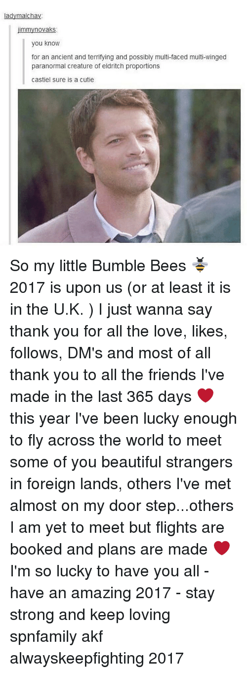 Bumbling: ladymalchav  mmyno vaks  you know  for an ancient and terrifying and possibly multi-faced multi-winged  paranormal creature of eldritch proportions  Castiel sure is a cutie So my little Bumble Bees 🐝 2017 is upon us (or at least it is in the U.K. ) I just wanna say thank you for all the love, likes, follows, DM's and most of all thank you to all the friends I've made in the last 365 days ❤ this year I've been lucky enough to fly across the world to meet some of you beautiful strangers in foreign lands, others I've met almost on my door step...others I am yet to meet but flights are booked and plans are made ❤I'm so lucky to have you all - have an amazing 2017 - stay strong and keep loving spnfamily akf alwayskeepfighting 2017