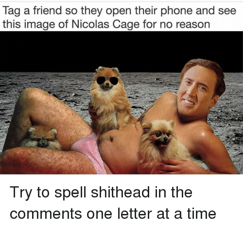 Nicolas Cage: lag a friend so they open their phone and see  this image of Nicolas Cage for no reason Try to spell shithead in the comments one letter at a time