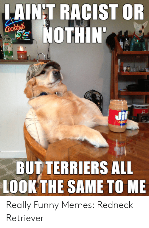 Funny Redneck Memes: LAIN'T RACIST OR  NOTHIN'  st  BUT TERRIERS ALL  LOOK THE SAME TO ME Really Funny Memes: Redneck Retriever