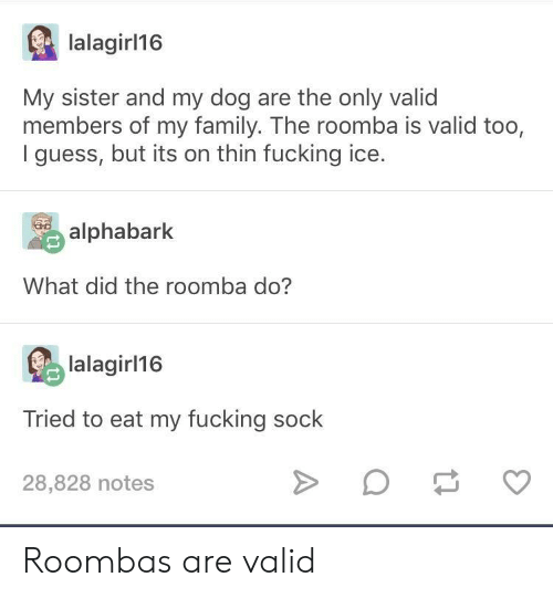 roombas: lalagirl16  My sister and my dog are the only valid  members of my family. The roomba is valid too,  I guess, but its on thin fucking ice.  alphabark  What did the roomba do?  lalagir 16  Tried to eat my fucking sock  28,828 notes Roombas are valid