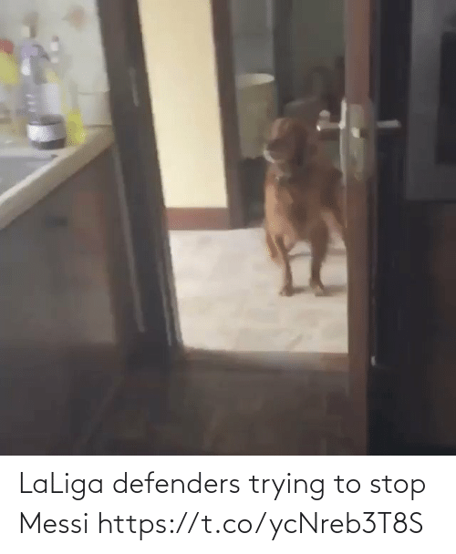 Laliga: LaLiga defenders trying to stop Messi  https://t.co/ycNreb3T8S
