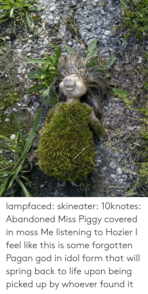 pagan: lampfaced: skineater:  10knotes: Abandoned Miss Piggy covered in moss  Me listening to Hozier  I feel like this is some forgotten Pagan god in idol form that will spring back to life upon being picked up by whoever found it