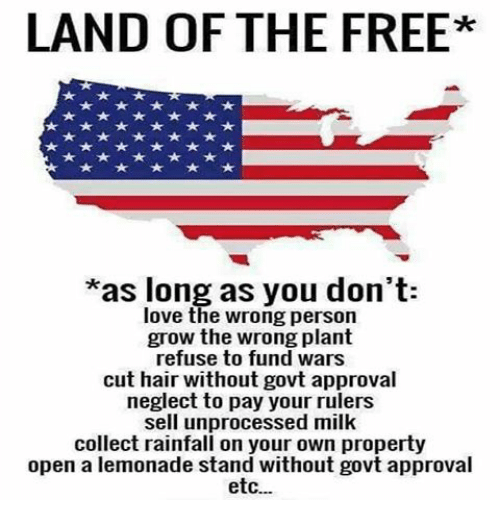 Memes, Ruler, and Lemonade: LAND OF THE FREE  *as long as you don't:  love the wrong person  grow the wrong plant  refuse to fund wars  cut hair without govt approval  neglect to pay your rulers  sell unprocessed milk  collect rainfall on your own property  open a lemonade stand without govt approval  etc...