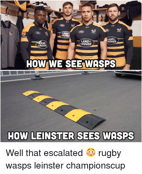 wasps: LAND  ROVE  LAND  ROVER  ROVER  AND  ROVER  .  HOW WE SEE WASPS  HOW LEINSTER SEES WASPS Well that escalated 😳 rugby wasps leinster championscup