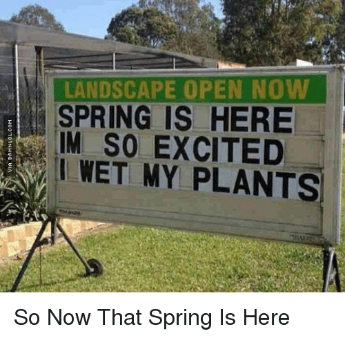 Memes, Excite, and Spring: LANDSCAPE OPEN NO  SPRING IS HERE  IM SO EXCITED  i WET MY PLANTS. So Now That Spring Is Here