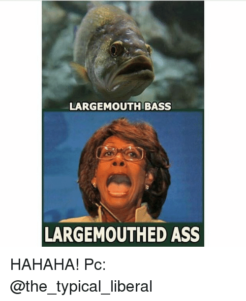 Typical Liberal: LARGEMOUTH BASS  LARGEMOUTHED ASS HAHAHA! Pc: @the_typical_liberal