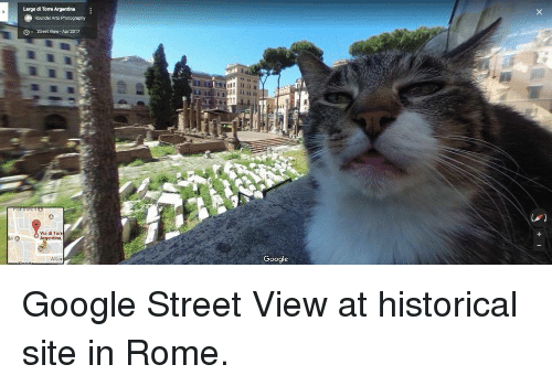 torr: Largo di Torre Argentina  Roundel Arts Photography  G  Street View- Ape 2017  Via di Torr  Argentina,  Google  Alta Google Street View at historical site in Rome.