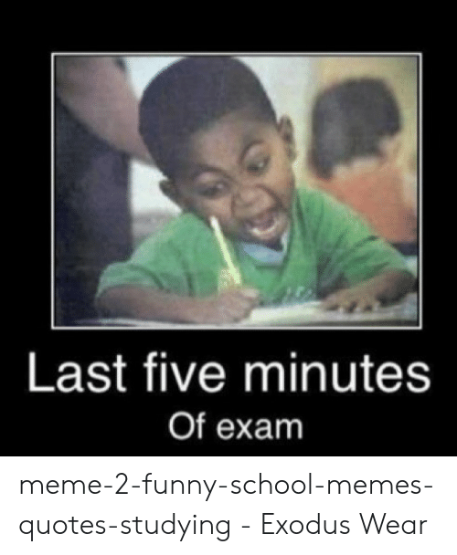 25 Best Memes About Funny Study Memes Funny Study Memes