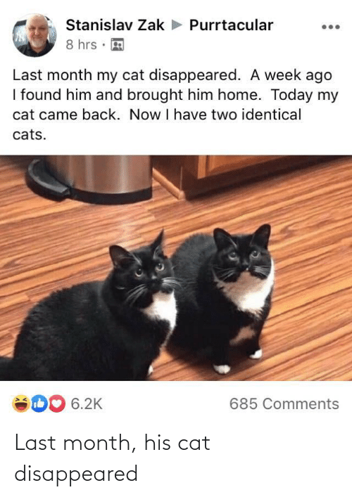 disappeared: Last month, his cat disappeared
