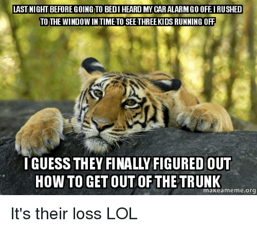 meme: LAST NIGHT BEFORE GOING TO BEDI HEARD MY CARALARM GO OFEIRUSHED  TO THE WINDOWINTIMETO SEETHREEKIDS RUNNING ORF  HOW TO GETOUT OF THE TRUNK  eme.org It's their loss LOL