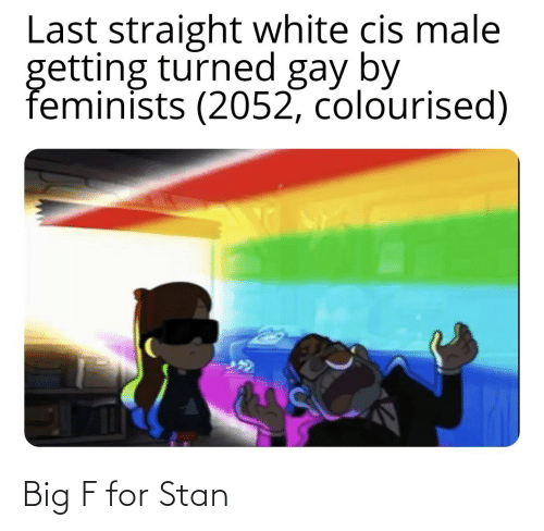 Stan: Last straight white cis male  getting turned gay by  feminists (2052, colourised) Big F for Stan