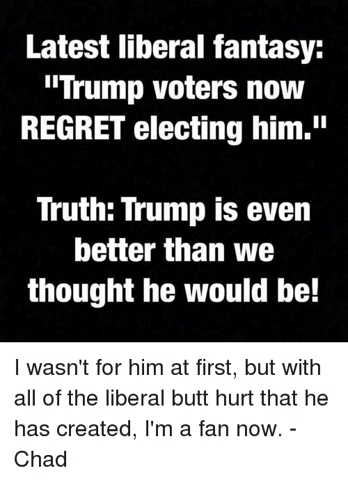 """Trump Voters: Latest liberal fantasy:  Trump voters now  REGRET electing him.""""  Truth: Trump is even  better than we  thought he would be! I wasn't for him at first, but with all of the liberal butt hurt that he has created, I'm a fan now.  -Chad"""