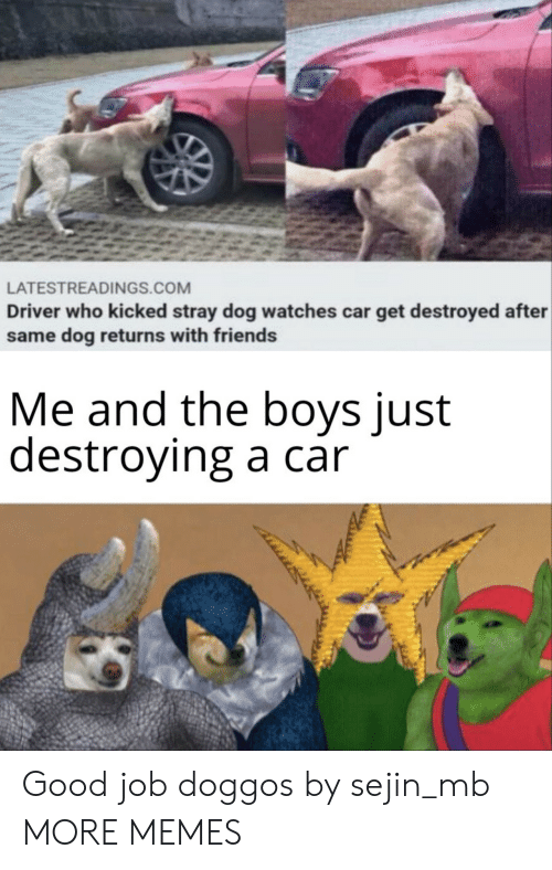 Watches: LATESTREADINGS.COM  Driver who kicked stray dog watches car get destroyed after  same dog returns with friends  Me and the boys just  destroying a car Good job doggos by sejin_mb MORE MEMES