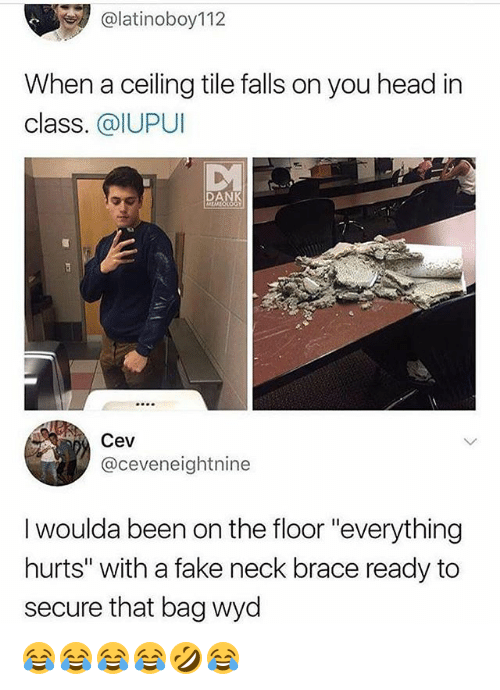 "Dank, Fake, and Head: @latinoboy112  When a ceiling tile falls on you head in  class. @IUPUI  DANK  Cev  @ceveneightnine  I woulda been on the floor ""everything  hurts"" with a fake neck brace ready to  secure that bag wyd 😂😂😂😂🤣😂"