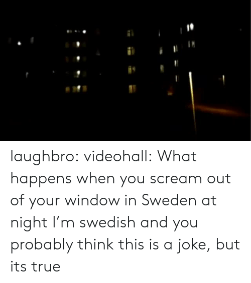 Swedish: laughbro:  videohall:  What happens when you scream out of your window in Sweden at night  I'm swedish and you probably think this is a joke, but its true