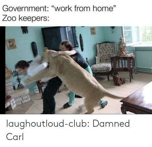 carl: laughoutloud-club:  Damned Carl