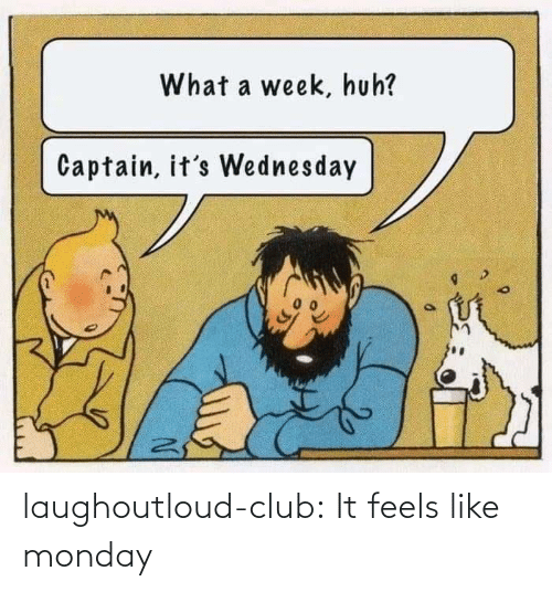 It Feels: laughoutloud-club:  It feels like monday