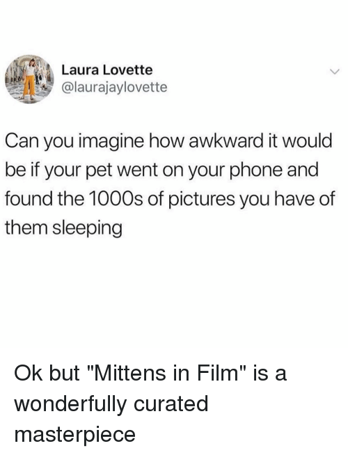 """Curated: Laura Lovette  @laurajaylovette  Can you imagine how awkward it would  be if your pet went on your phone and  found the 1000s of pictures you have of  them sleeping Ok but """"Mittens in Film"""" is a wonderfully curated masterpiece"""