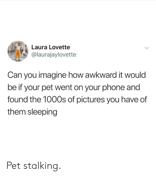 laura: Laura Lovette  @laurajaylovette  Can you imagine how awkward it would  be if your pet went on your phone and  found the 100Os of pictures you have of  them sleeping Pet stalking.