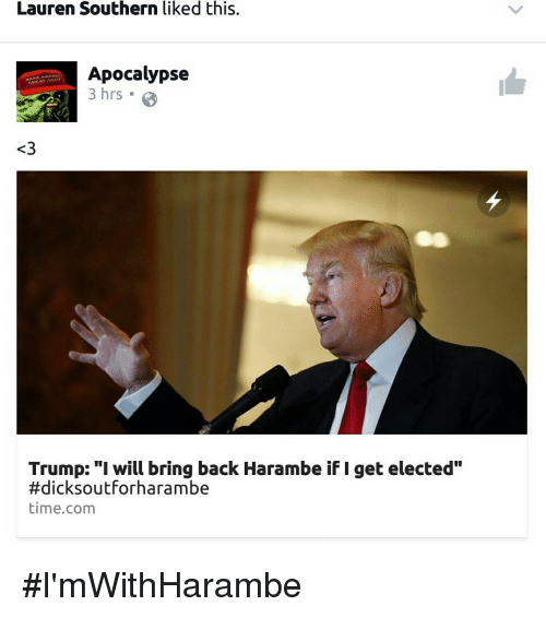"Trump: Lauren Southern liked this.  Apocalypse  3 hrs .  MAKE AMERK  OREAT AGAIN  <3  Trump: ""I will bring back Harambe if I get elected""  #dicksoutforharambe  time.com <p>#I'mWithHarambe</p>"