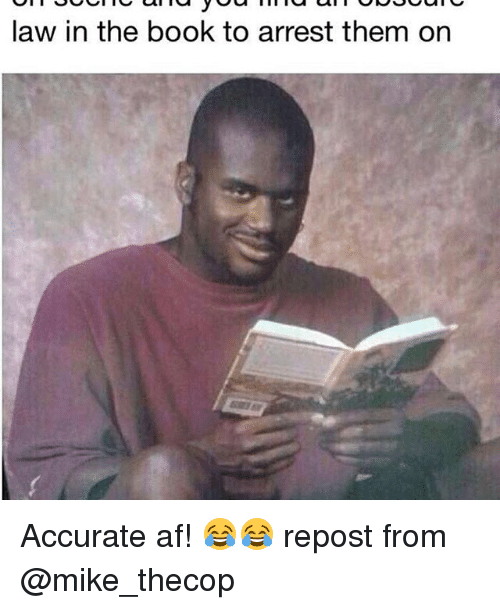 law in the book to arrest them on accurate af 18235915 the book of meme law,book free download funny memes,Meme Law