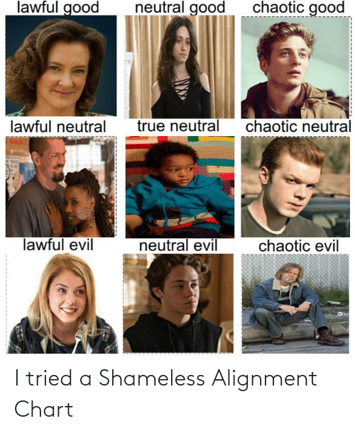 Chaotic Good: lawful good  chaotic good  neutral good  true neutral  chaotic neutral  lawful neutral  lawful evil  neutral evil  chaotic evil I tried a Shameless Alignment Chart