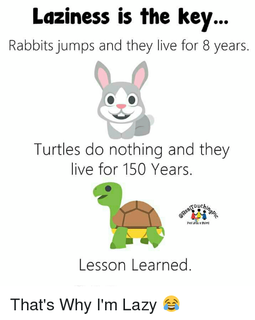 Lazy, Memes, and Live: Laziness is the key  Rabbits jumps and they live for 8 years  Turtles do nothing and they  live for 150 Years  pica with 89toM  Lesson Learned That's Why I'm Lazy 😂