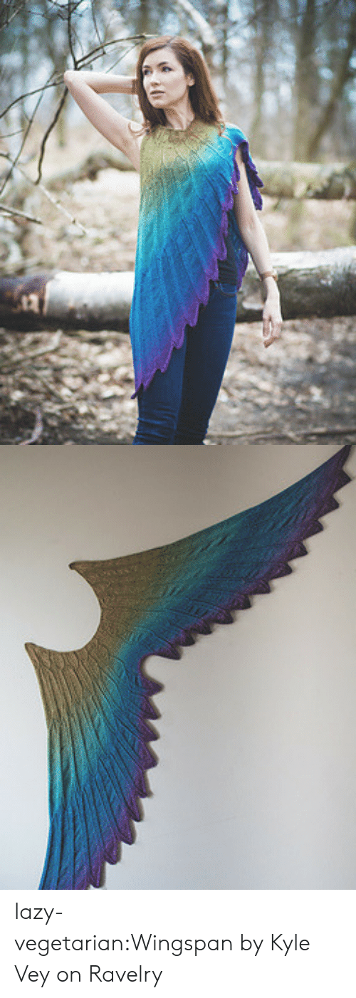 Patterns: lazy-vegetarian:Wingspan by Kyle Vey on Ravelry