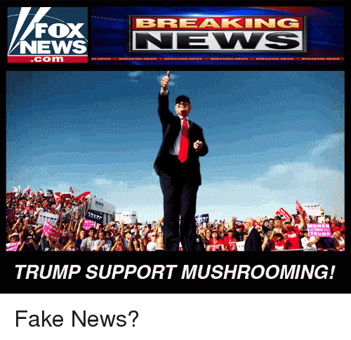 Fake, News, and Politics: LBIRR EAKIN G  FOX  NEWS  Com  TRUMP SUPPORT MUSHROOMING! Fake News?