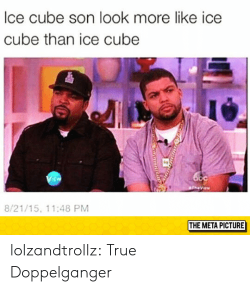 cube: lce cube son look more like ice  cube than ice cube  i4  EW  8/21/15, 11:48 PM  THE META PICTURE lolzandtrollz:  True Doppelganger