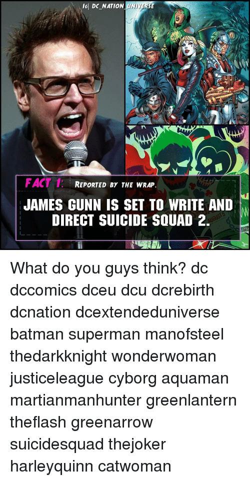 Batman, Memes, and Squad: ld DC NATION UNIVERSE  FACT 1: REPORTED BY THE WRAP,  JAMES GUNN IS SET TO WRITE AND  DIRECT SUICIDE SQUAD 2 What do you guys think? dc dccomics dceu dcu dcrebirth dcnation dcextendeduniverse batman superman manofsteel thedarkknight wonderwoman justiceleague cyborg aquaman martianmanhunter greenlantern theflash greenarrow suicidesquad thejoker harleyquinn catwoman