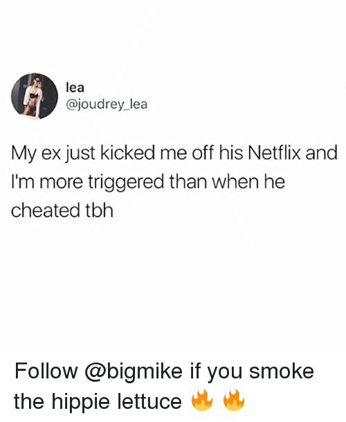 Memes, Netflix, and Tbh: lea  @joudrey lea  My ex just kicked me off his Netflix and  I'm more triggered than when he  cheated tbh Follow @bigmike if you smoke the hippie lettuce 🔥 🔥