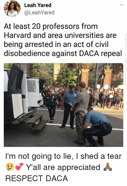 Memes, Respect, and Harvard: Leah Yared  @LeahYared  At least 20 professors from  Harvard and area universities are  being arrested in an act of civil  disobedience against DACA repeal  2 I'm not going to lie, I shed a tear 😢💕 Y'all are appreciated 🙏🏾 RESPECT DACA