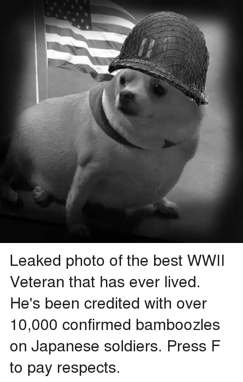 Soldiers, Best, and Japanese: Leaked photo of the best WWII Veteran that has ever lived. He's been credited with over 10,000 confirmed bamboozles on Japanese soldiers. Press F to pay respects.