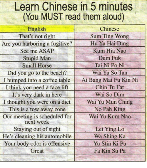 pah: Learn Chinese in 5 minutes  (You MUST read them aloud)  English  Chinese  Sum Ting Wong  That's not right  Hu Yu Hai Ding  Are you harboring a fugitive?  See me ASAP  Kum Hia Nao  Dum Fuk  Stupid Man  Tai Ni Po Ni  Small Horse  Wai Yu So Tan  Did you go to the beach  I bumped into a coffee table  Ai Bang Mai Fu Kin Ni  Chin Tu Fat  I think you need a face lift  Wai So Dim  It's very dark in here  Wai Yu Mun Chin  I thought you were on a diet  No Pah Kin  This is a tow away zone  Wai Yu Kum Nao  Our meeting is scheduled for  next week  Staying out of sight  Lei Ying Lo  He's cleaning his automobile  Wa Shing Ka  Your body odor is offensive  Yu Stin Ki Pu  Great  Fa Kin Su Pa