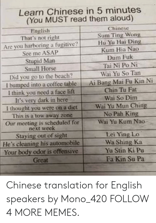 pah: Learn Chinese in 5 minutes  (You MUST read them aloud)  Chinese  Sum Ting Wong  Hu Yu Hai Ding  Kum Hia Nao  Dum Fuk  Tai Ni Po Ni  Wai Yu So Tan  Ai Bang Mai Fu Kin Ni  Chin Tu Fat  English  That's not right  Are you harboring a fugitive?  See me ASAP  Stupid Man  Small Horse  Did you go to the beach?  I bumped into a coffee table  I think you need a face lift  It's very dark in here  I thought you were on a diet  This is a tow away zone  Wai So Dim  Wai Yu Mun Ching  No Pah King  Wai Yu Kum Nao  Our meeting is scheduled for  next week  Staying out of sight  He's cleaning his automobile  Your body odor is offensive  Great  Lei Ying Lo  Wa Shing Ka  Yu Stin Ki Pu  Fa Kin Su Pa Chinese translation for English speakers by Mono_420 FOLLOW 4 MORE MEMES.