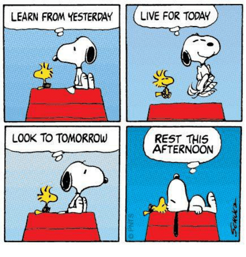 Memes, Live, and Today: LEARN FROM YESTERDAY  LIVE FOR TODAY  IL  LOOK TO TOMORROW  REST THIS  AFTERNOON