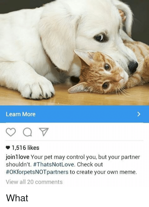 Creat Your Own Meme: Learn More  1,516 likes  join love Your pet may control you, but your partner  shouldn't. #ThatsNotLove. Check out  #OKforpetsNOTpartners to create your own meme.  View all 20 comments What