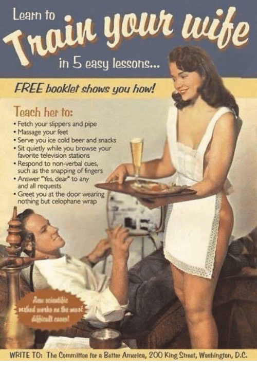 Beer, Massage, and Memes: Learn to  in 5 easy lessons...  FREE booklet shows you how!  Teach her to:  Fetch your slippers and pipe  Massage your feet  Serve you ice cold beer and snacks  Sit quietly while you browse your  favorite television stations  Respond to non-verbal cues  such as the snapping of fingers  Answer Yes, dear to any  and all requests  Greet you at the door wearing  nothing but celophane wrap  WRITE TO: The Committee for a Better Amerien, 200 King Sheet, Washington, D.C.