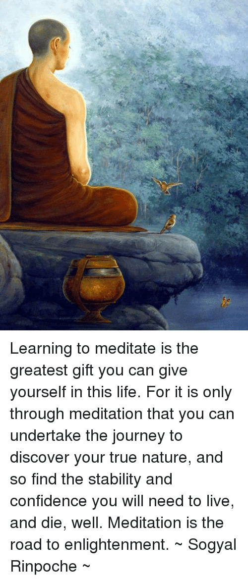enlightening: Learning to meditate is the greatest gift you can give yourself in this life. For it is only through meditation that you can undertake the journey to discover your true nature, and so find the stability and confidence you will need to live, and die, well. Meditation is the road to enlightenment.  ~ Sogyal Rinpoche ~