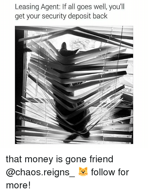 leasing: Leasing Agent: lf all goes well, you'll  get your security deposit back  @ch  aos rei  gns that money is gone friend @chaos.reigns_ 🐱 follow for more!