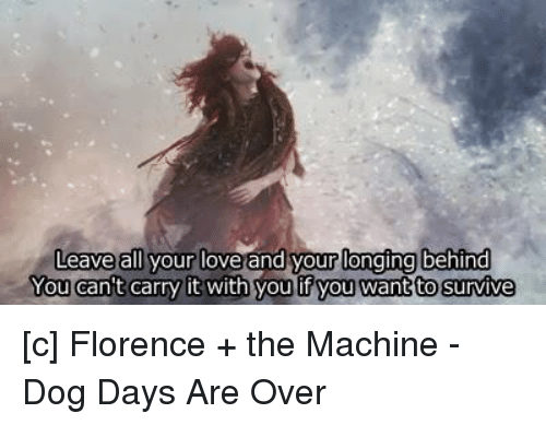 Dogs Days Lyrics Florence