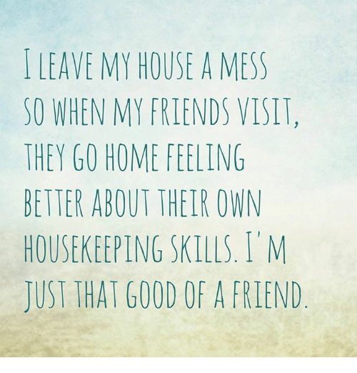 Housekeeping: LEAVE MY HOUSE A MESS  SO WHEN MY FRIENDS VISIT,  THEY GO HOME FEELING  BETTER ABOUT THEIR OWN  HOUSEKEEPING SKILLS, I M  JUST THAT GOOD OF A FRIEND