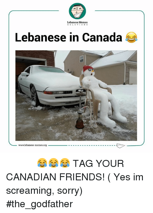 Scream, The Godfather, and Canada: Lebanese Memes  SOLUTIONS  Lebanese in Canada  wwwlebanese memes.org جلّد فدا الارغيلة 😂😂😂 TAG YOUR CANADIAN FRIENDS! ( Yes im screaming, sorry)  #the_godfather